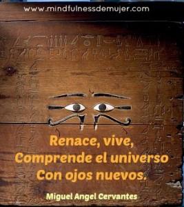 renacer8
